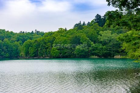 静寂の湖オンネトーの写真素材 [FYI01256340]
