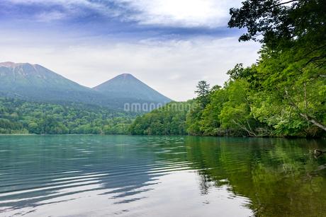 静寂の湖オンネトーの写真素材 [FYI01256343]