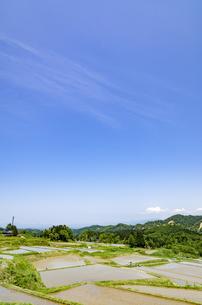 山形県 四ヶ村の棚田の写真素材 [FYI01256369]