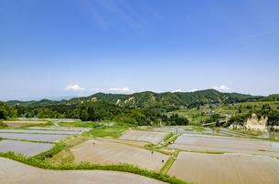 山形県 四ヶ村の棚田の写真素材 [FYI01256372]