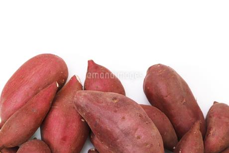 さつま芋の写真素材 [FYI01256453]
