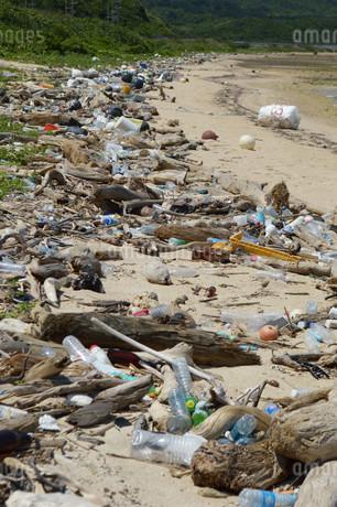 ゴミの多い海岸の写真素材 [FYI01256523]