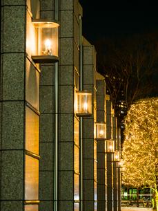 新宿 クリスマスイルミネーションの写真素材 [FYI01256646]