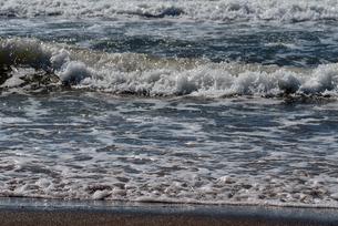 由比ガ浜の波うち際の写真素材 [FYI01256731]