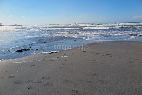由比ガ浜の写真素材 [FYI01256734]