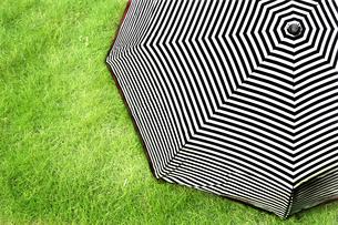 芝生の上のストライプ柄の雨傘の写真素材 [FYI01256746]