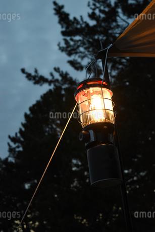 キャンプ場のランタンの写真素材 [FYI01256769]
