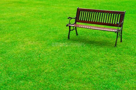 公園の芝生に置かれたベンチの写真素材 [FYI01256875]