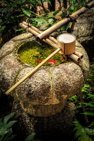 紅葉が浮かぶ手水鉢と柄杓の写真素材 [FYI01256879]