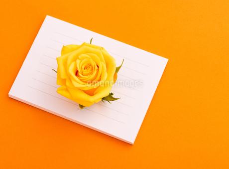 メッセージカードの写真素材 [FYI01256920]