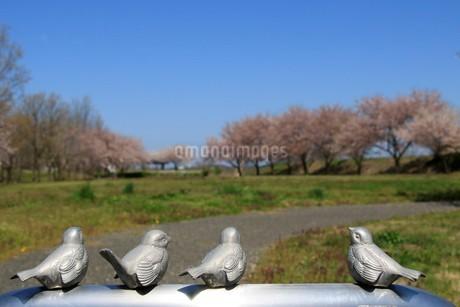 スズメのオブジェのある公園の写真素材 [FYI01256947]