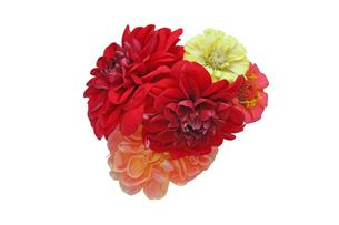 ダリアとジニアの花束の写真素材 [FYI01257157]