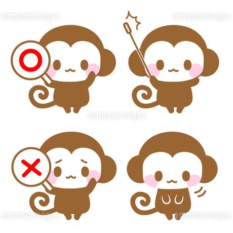 ◯×札・指示棒で解説するお猿先生イラストのイラスト素材 [FYI01257281]