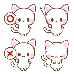 ◯×札・指示棒で解説する白猫先生イラストのイラスト素材 [FYI01257282]