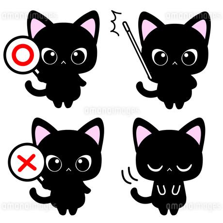 ◯×札・指示棒で解説する黒猫先生イラストのイラスト素材 [FYI01257289]