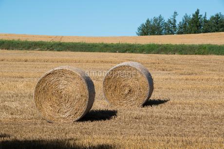 収穫後の麦畑と麦ロール 美瑛町の写真素材 [FYI01257377]