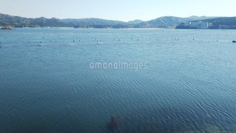 三陸の海 5月の写真素材 [FYI01257545]