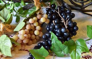 白と黒のブドウの写真素材 [FYI01257560]