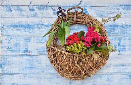 壁に掛けられた花飾りの写真素材 [FYI01257588]