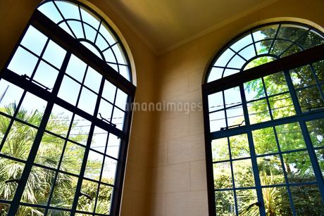 窓から見える緑の風景の写真素材 [FYI01257597]
