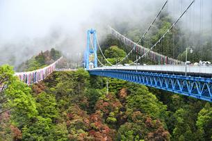 雨上がりの竜神大吊橋の写真素材 [FYI01257663]
