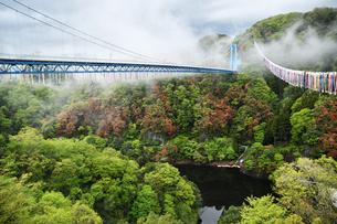 雨上がりの竜神大吊橋の写真素材 [FYI01257665]
