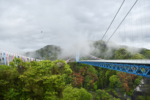 雨上がりの竜神大吊橋の写真素材 [FYI01257666]