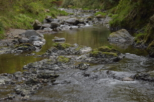 川の写真素材 [FYI01257870]
