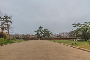 春の秋田城の復元された政庁跡にたつ忠魂碑の風景の写真素材 [FYI01257888]