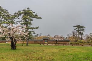 春の秋田城の復元された政庁跡にたつ忠魂碑の風景の写真素材 [FYI01257890]