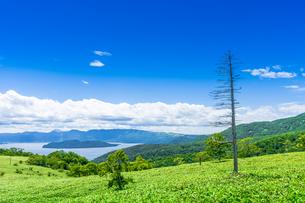 爽快 北海道 藻琴山展望台の写真素材 [FYI01258026]