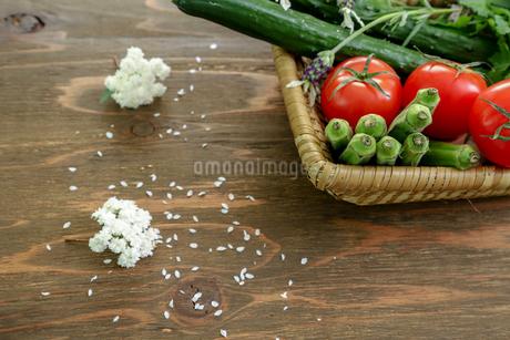 様々な野菜が入ったカゴの写真素材 [FYI01258282]