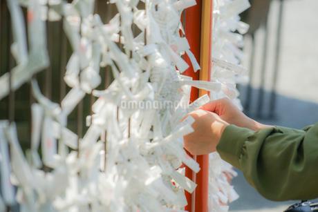 日本の神社のおみくじの写真素材 [FYI01258466]