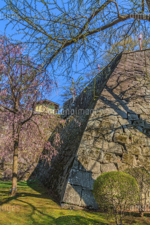 春の盛岡城の風景の写真素材 [FYI01258475]