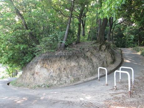 山の入り口の写真素材 [FYI01258506]
