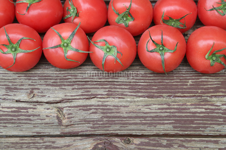 トマトの写真素材 [FYI01258558]