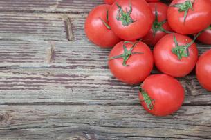 トマトの写真素材 [FYI01258559]