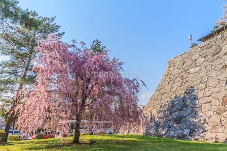 春の盛岡城の風景の写真素材 [FYI01258609]