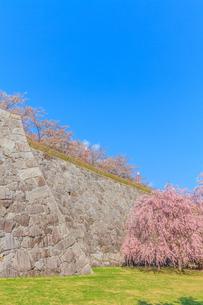 春の盛岡城の風景の写真素材 [FYI01258610]