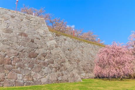 春の盛岡城の風景の写真素材 [FYI01258611]