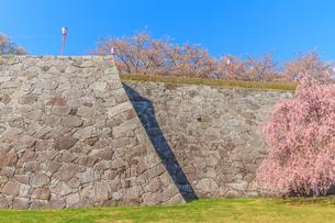 春の盛岡城の風景の写真素材 [FYI01258612]