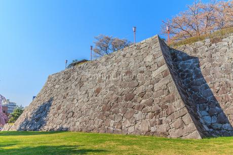 春の盛岡城の風景の写真素材 [FYI01258613]