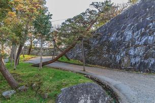 春の盛岡城の風景の写真素材 [FYI01258677]