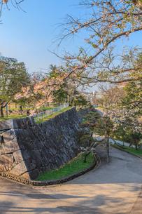 春の盛岡城跡の凌雲亭の風景の写真素材 [FYI01258734]