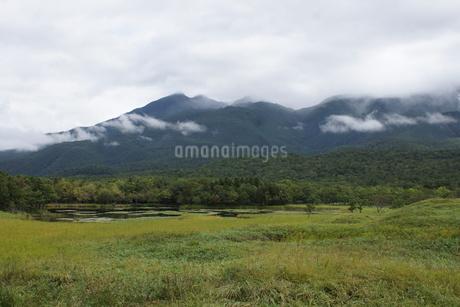 知床半島の風景 の写真素材 [FYI01258779]