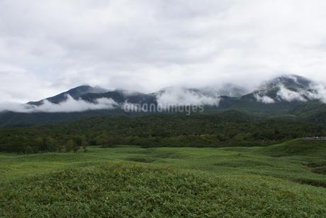 知床半島の風景 の写真素材 [FYI01258784]