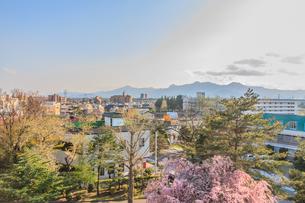 春の盛岡城からみた風景の写真素材 [FYI01258812]