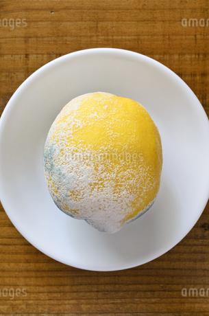 青カビ レモンの写真素材 [FYI01259051]