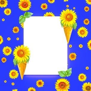 花の写真素材 [FYI01259108]