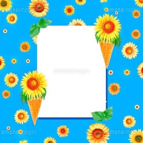 花の写真素材 [FYI01259109]